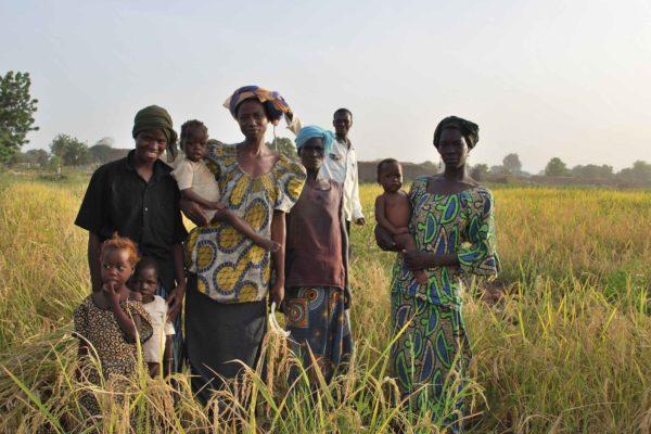 AP1-1-Femmes et enfants périmètre rizicole