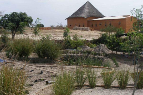 AP3-2-jardin expérimental et courbes de niveaux juin 2011 VP