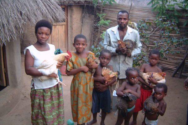 AP5-1-5_Famille poules