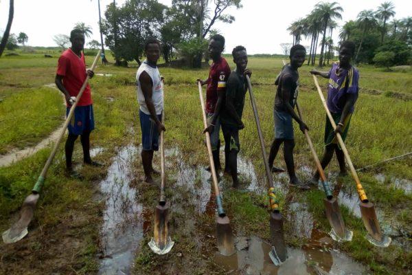 AP8-1-Labour au Kadiandou à Tobor 1