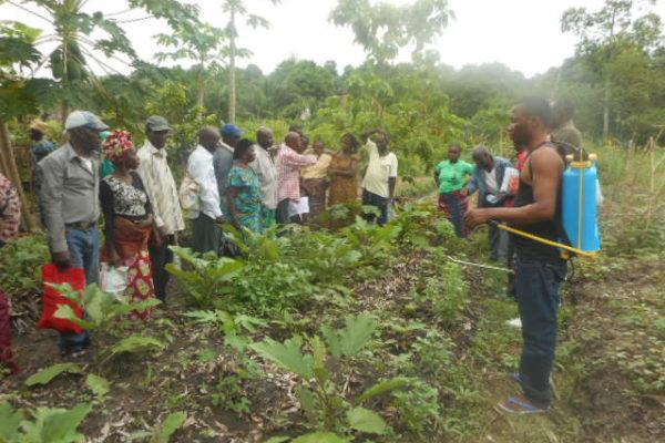 AP9-1 - tmg - Echange inter-groupes entre Kombé Kibelolo et Grâce de Dieu à Nganga Lingolo