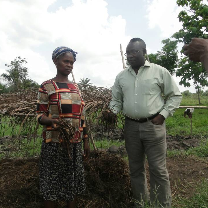 Beneficiaries producers of the project in Togo