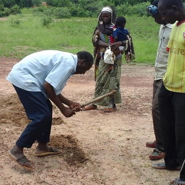Structurer la filière de céréales locales