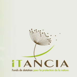 Fonds de dotation Itancia